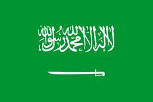 https://images.inwx.com/flags/sa.png